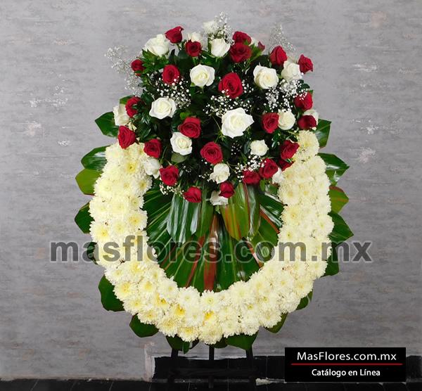 A02 Tripie 50 Rosas Y Base