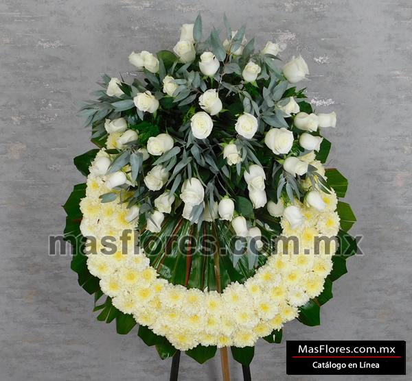 A03 Tripie 50 Rosas Blancas