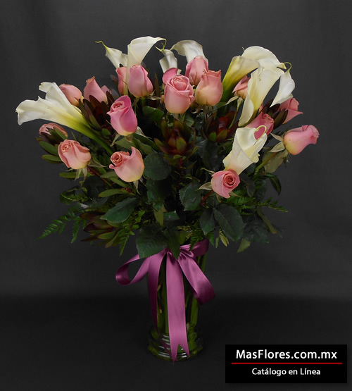 Alcatraces Rosas Masflorescommx
