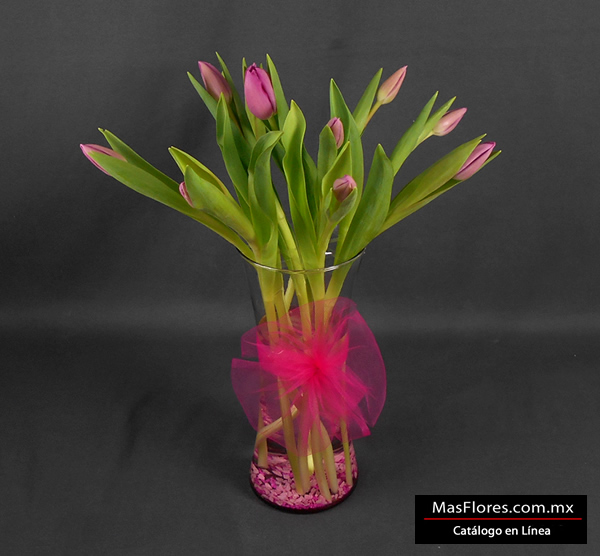 10 tulipanes holandeses color rosa